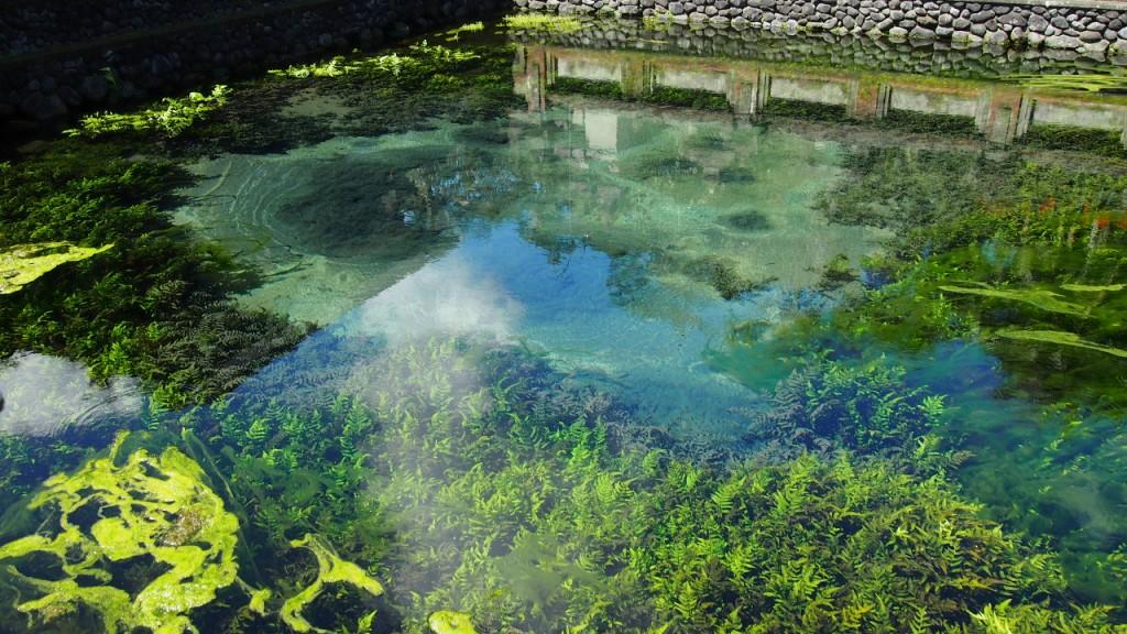 Tirta Empul Pool