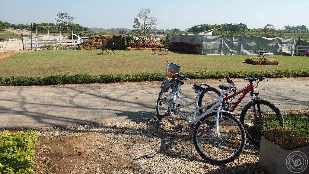 เช่าจักรยาน ไร่บุญรอด สิงห์ปาร์ค เชียงราย