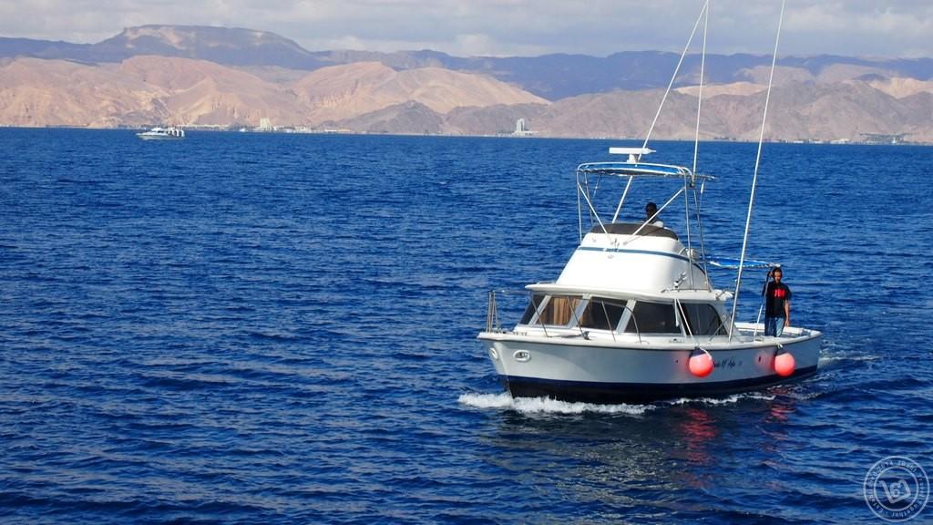 เรือขนส่งอาหาร Aqaba