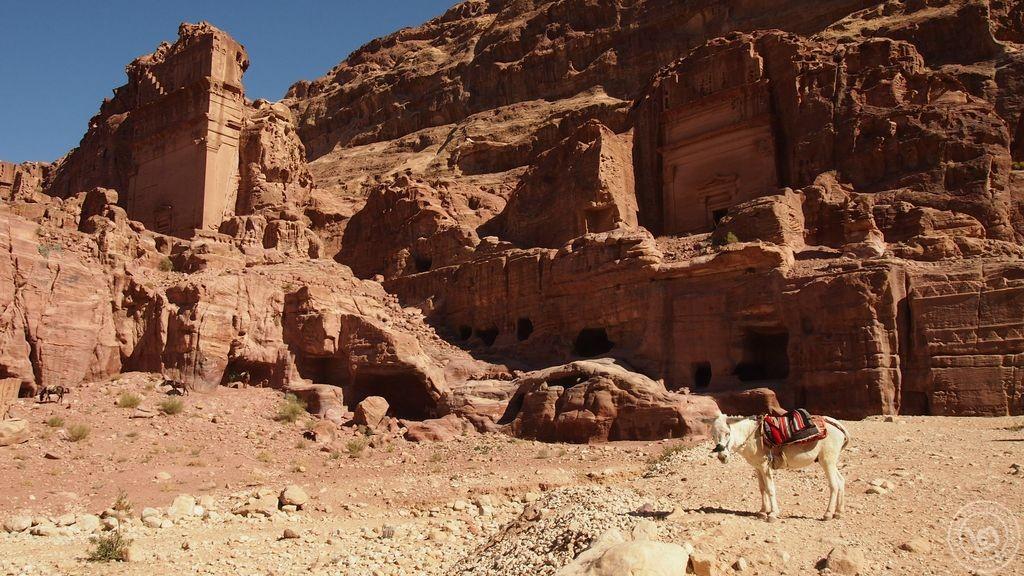 Petra เมืองในหุบเขาที่เจาะหินเข้าไป