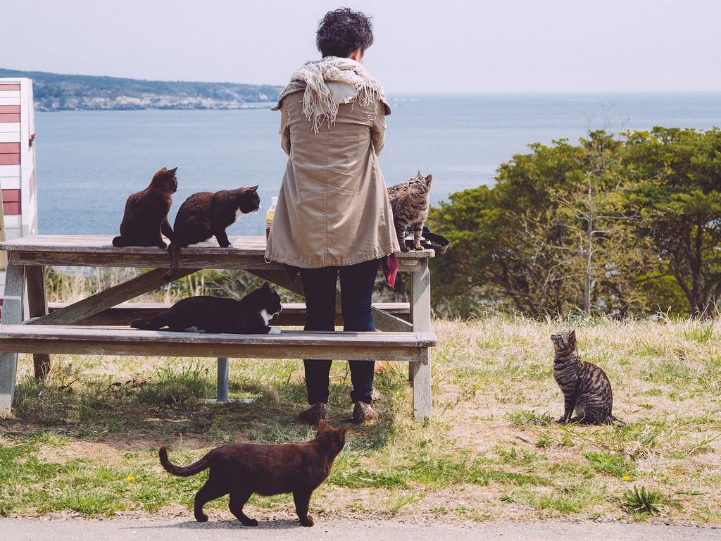 ภาพจาก Flickr - かがみ~
