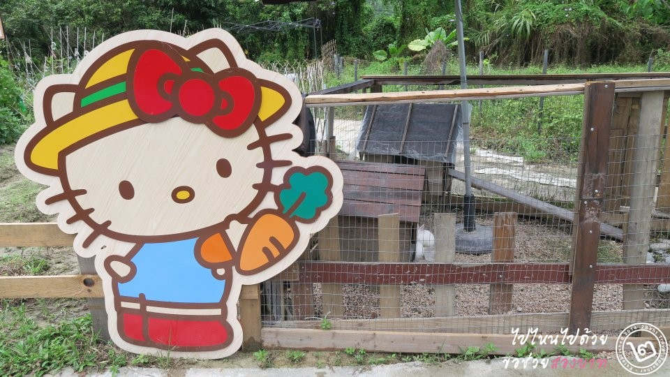 Hello Kitty Organic Farm