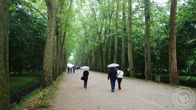 Chenonceau Garden