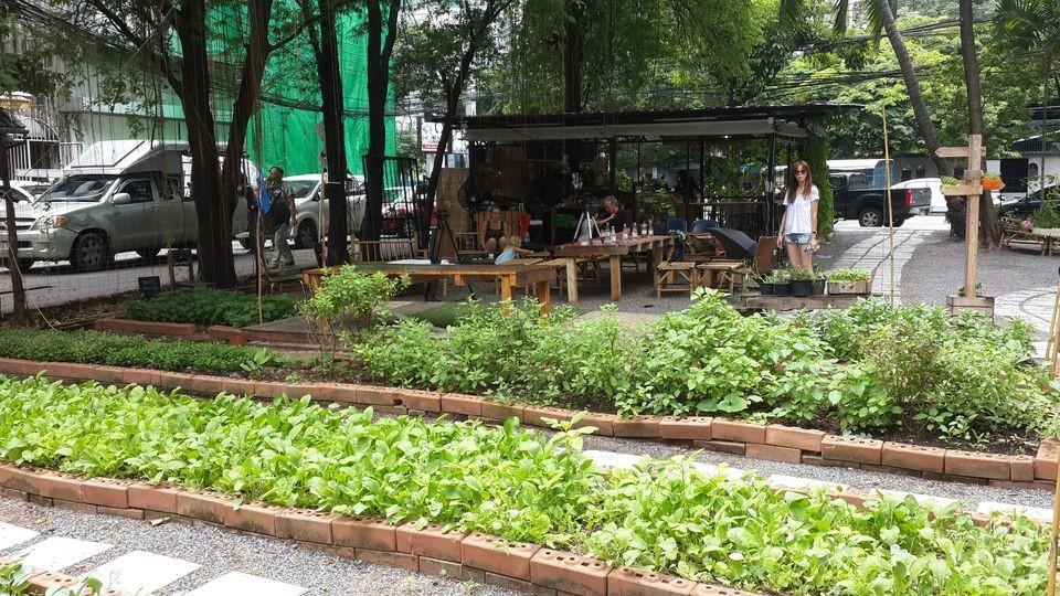 Root Garden