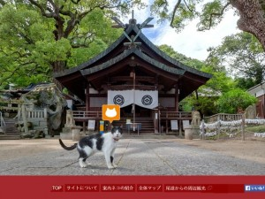 Cat Street View : Kuro Ushitora Shrine