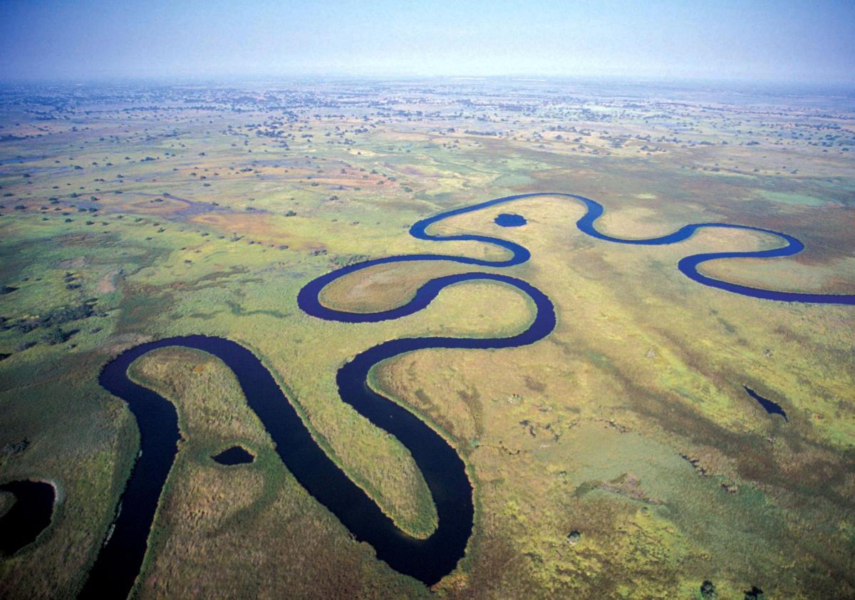 Okavango River Delta ภาพจากการท่องเที่ยว Botswana