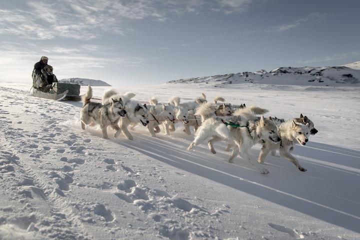 ภาพจากการท่องเที่ยวกรีนแลนด์