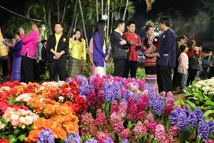 ดอกไม้สวย พลุงามที่กว๊านพะเยา (ภาพจากเทศบาลพะเยา)