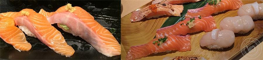 Salmon comparison midori