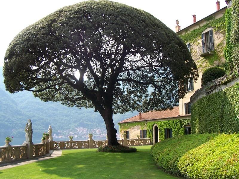 วิวของจริงที่ Villa del Balbianello (ภาพโดย MarkusMark)