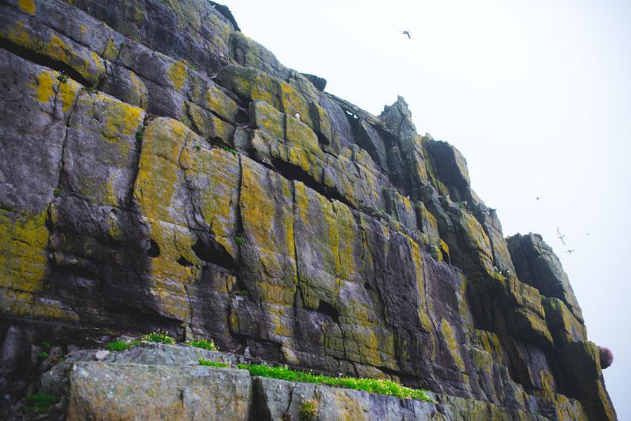 หน้าผาหินบนเกาะ Skellig Michael ภาพโดย Valerie Hinojosa / Flickr