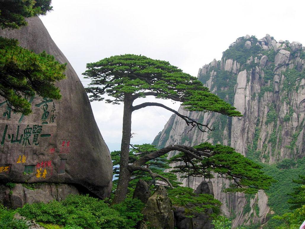 มรดกโลก เขาหวงซาน (Huangshan)