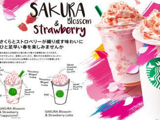 Japan Starbucks Sakura 2016