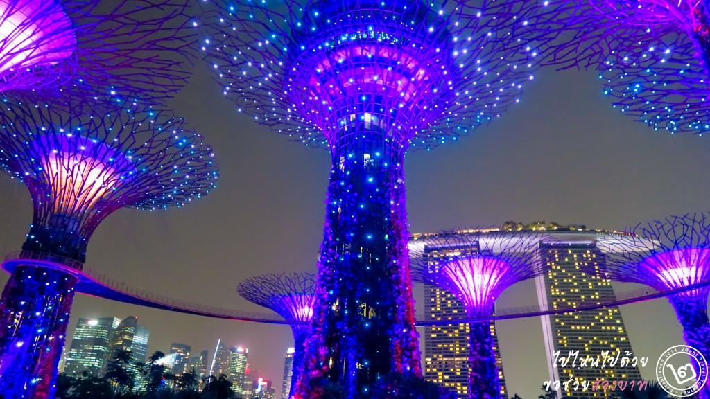 Supertree Groove Show - Gardens by the Bay