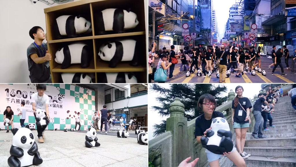 ภาพเบื้องหลังแฟลชม็อบ 1600 Pandas ที่ฮ่องกง