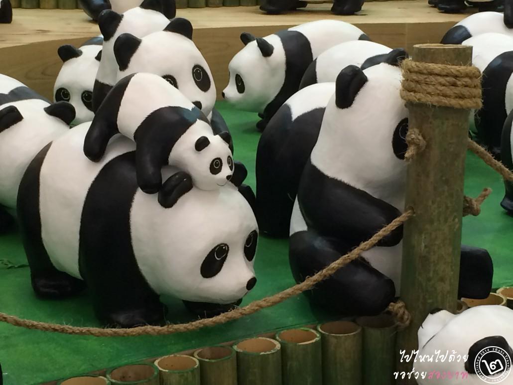 1600 pandas plus thailand