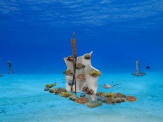 ประติมากรรมใต้ทะเลที่เกาะเต่า จ.สุราษฎร์ธานี Ocean Utopia