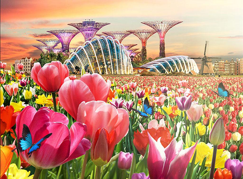 งาน Tulipmania - ภาพจาก Gardens by the Bay