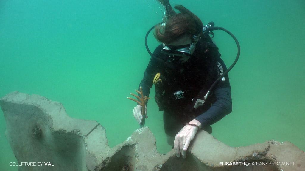 เบื้องหลังการจัดแสดงประติมากรรมใต้ทะเล Ocean Utopia โดยคุณ Val