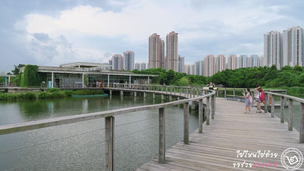 พื้นที่ชุ่มน้ำ Hong Kong Wetland Park