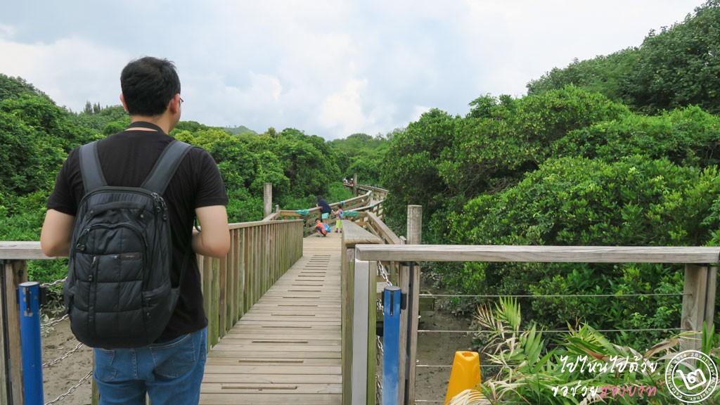ป่าชายเลน Hong Kong Wetland Park