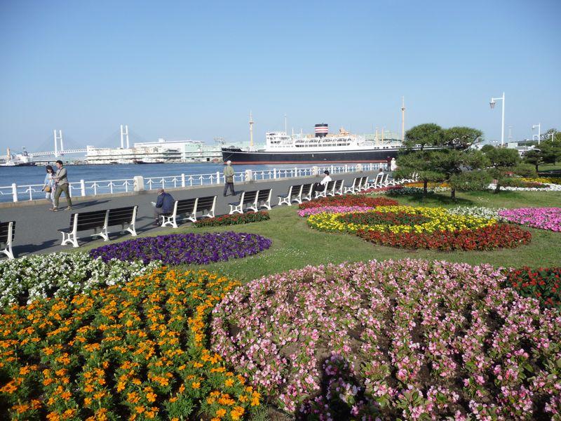 สวน Yamashita Park (ภาพจากเว็บไซต์เมืองโยโกฮามา)