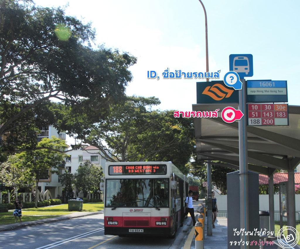 ป้ายรถเมล์สิงคโปร์ : ภาพจาก Flickr - yuichirock