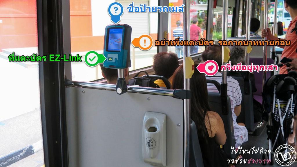 วิธีการแตะบัตร EZ-Link และการดูป้ายรถเมล์ในสิงคโปร์