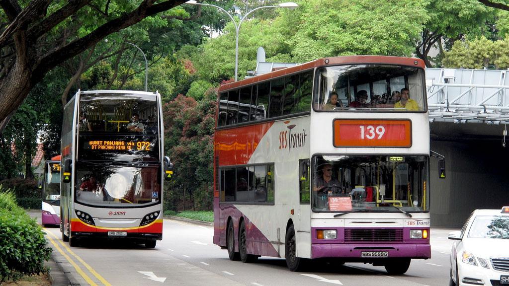 รถเมล์สิงคโปร์ : ภาพจาก Flickr - SgTransport