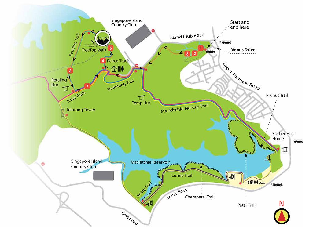 TreeTop-Walk-Trail