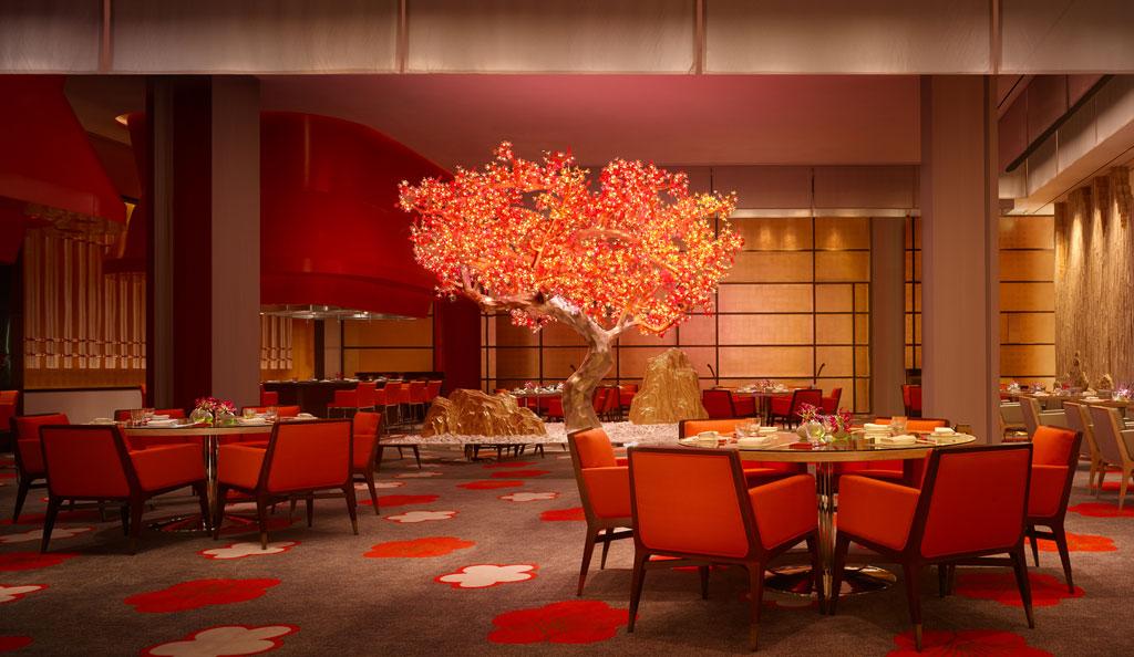 ห้องอาหารญี่ปุ่น Mizumi มีต้นไม้สลับสี ทั้งช่วงดอกซากุระบาน และใบไม้แแดง