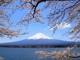 ภูเขาไฟฟูจิ Mt.Fuji