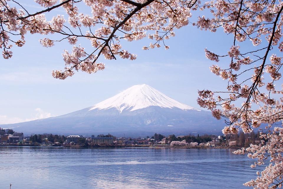 ภาพโดย Midori / Wikipedia