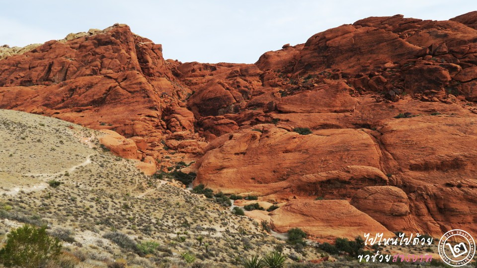 red-rock canyon
