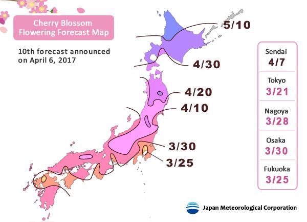 พยากรณ์ซากุระบาน โดย Japan Meteorological ครั้งที่ 10 เมื่อ 7 เมษายน 2017