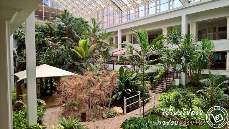 สวนเขียวใจกลางอาคารของโรงแรม
